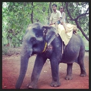 Elephant Park - a swift ride on the Hindi speaking elephant...ain't that cute:-)